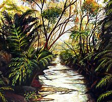 Katoomba Creek, Blue Mountains Australia by Linda Callaghan