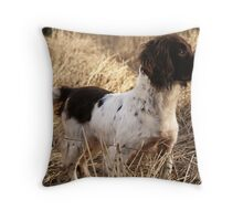 The Catcher in the Rye Throw Pillow