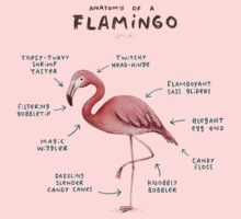 Anatomy of a Flamingo Kids Tee