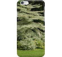 tree in the garden iPhone Case/Skin