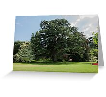 tree in the garden Greeting Card