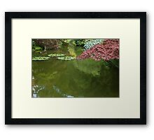 tree in spring Framed Print