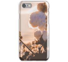 Cotton Field 15 iPhone Case/Skin