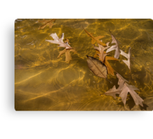 Floating Gold, Honey, Amber and Caramel Canvas Print