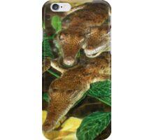 Baby Crocs iPhone Case/Skin