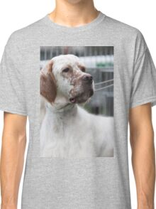 pointer dog Classic T-Shirt
