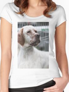 pointer dog Women's Fitted Scoop T-Shirt