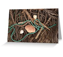 Beachcombing Finds Greeting Card