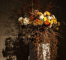 Mother Nature's Autumn Colors - a Still Life by Georgia Mizuleva