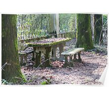 table and stone bench in the woods Poster
