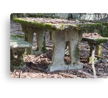 table and stone bench in the woods Canvas Print