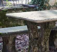 table and stone bench in the woods by spetenfia