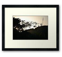 Weaver nests Framed Print