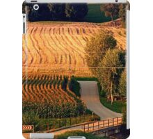Meadows on a summer evening | landscape photography iPad Case/Skin