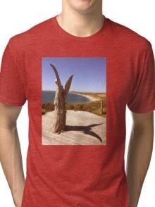 Angel of the Coast Tri-blend T-Shirt