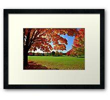 Beautiful October Framed Print