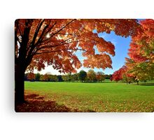 Beautiful October Canvas Print