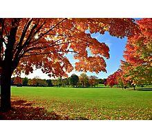 Beautiful October Photographic Print