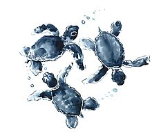 Indigo Blue Sea Turtles Photographic Print
