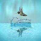 Hummingbird Play ... by Ann  Warrenton