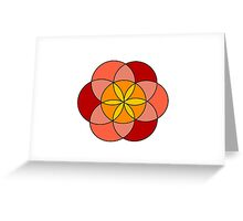 Orange petals  Greeting Card