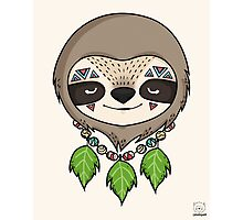 Sloth Head Photographic Print