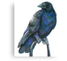 Raven Nevermore Canvas Print