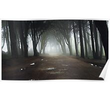 Path in a Magic forest with mist Poster