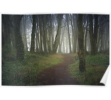 Magic forest with mist Poster