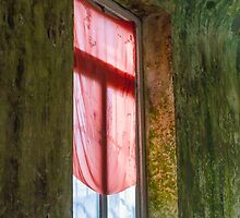 Old window in abandoned house by spetenfia