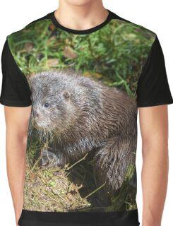 English Otter  Graphic T-Shirt