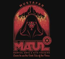 Maul Martial Arts by stationjack