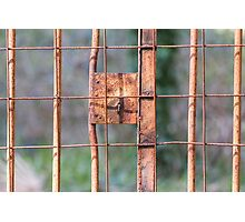 old iron gate Photographic Print