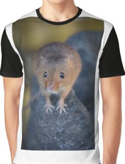 Harvest Mouse Graphic T-Shirt