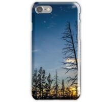 Sunset in Dead Forest iPhone Case/Skin