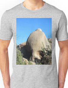 Skull Rock, Joshua Tree National Park Unisex T-Shirt