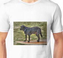 Paddle Board Dog Unisex T-Shirt