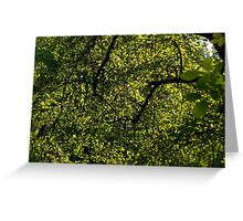 Glowing Green Abstract Greeting Card