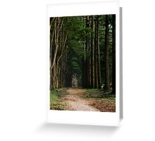 Tree Arch  Greeting Card