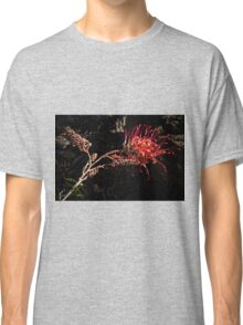 Grevillea Leith Park Victoria 20160920 7517 Classic T-Shirt