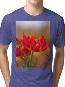 Flowers Art Tri-blend T-Shirt