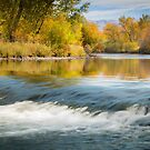 Boise River in the Fall by Kathleen  Bowman