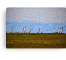 By The Blue Water Canvas Print