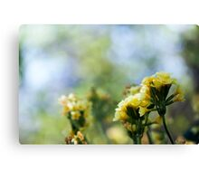 The Color of Summer Canvas Print