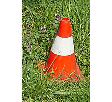 road cone in the meadow Photographic Print
