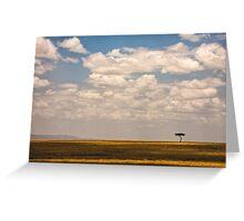 Solo Acacia - Masai Mara, Kenya Greeting Card