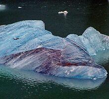 So cold, it's blue! by Nancy Richard