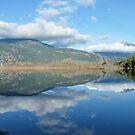 Pemberton Reflection, BC, Canada by AnnDixon