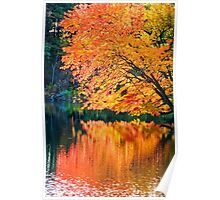 The Magic of Autumn in New England Poster
