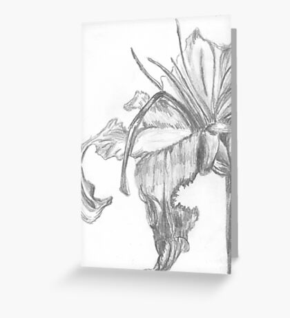 Lily Decay  Greeting Card